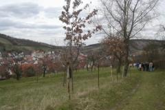 Frühjahrswanderung 2006